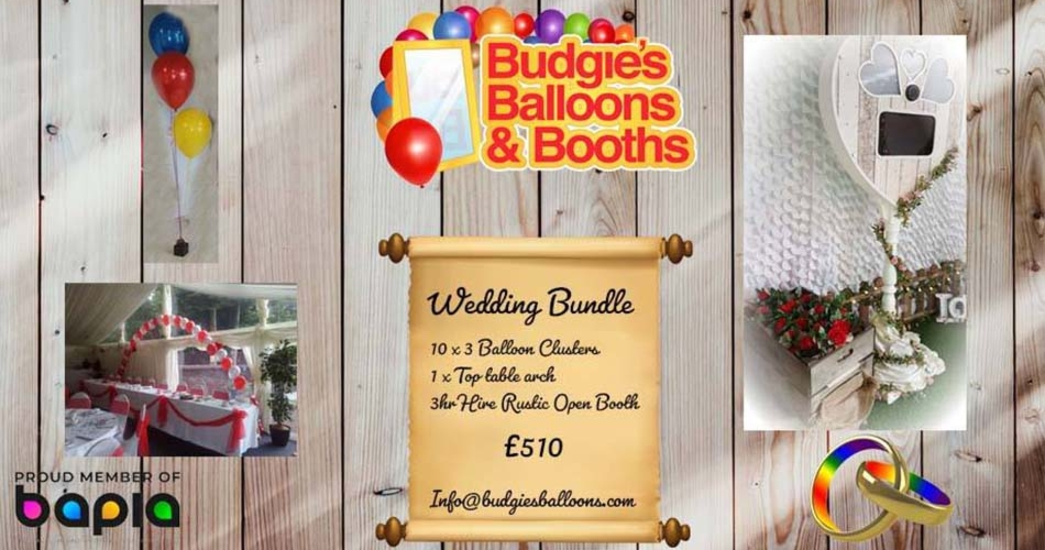 Image 2: Budgies Balloons