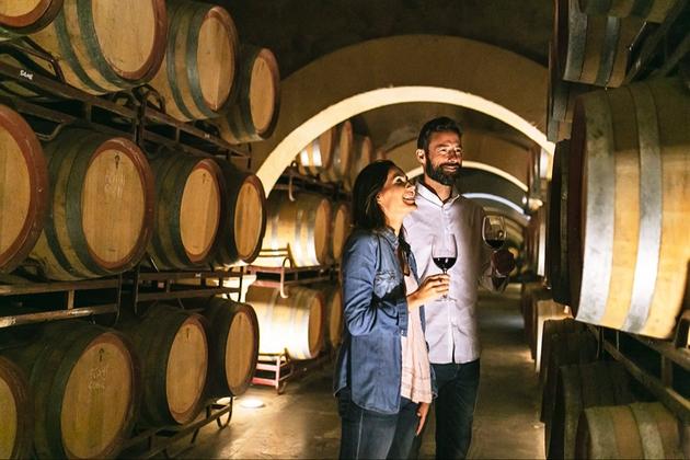 All aboard the Murcia wine bus: Image 1