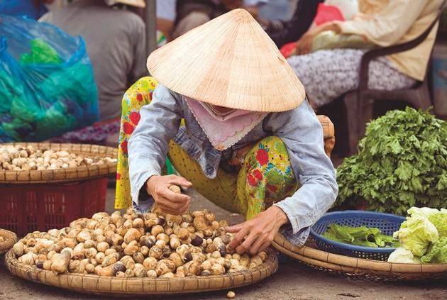 Cruise Vietnam for your honeymoon: Image 1