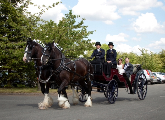 We interview Warwick Shire Horse Carriages