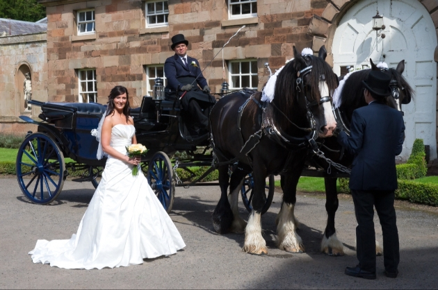 We interview transport company Warwick Shire Horse Carriages